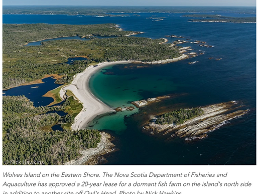 Nova Scotia Department of Fisheries and Aquaculture Ignores Yet Another Community