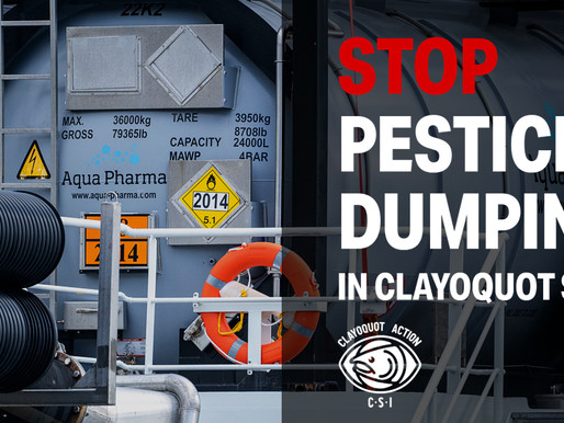 Sign the Letter:  Stop pesticide dumping in Clayoquot Sound