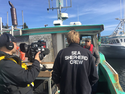 Sea Shepherd Conservation Society comes to Beach Meadows, Nova Scotia!