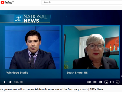 Federal Government will not renew fish farm licenses around Discovery Islands  | APTN News, Video