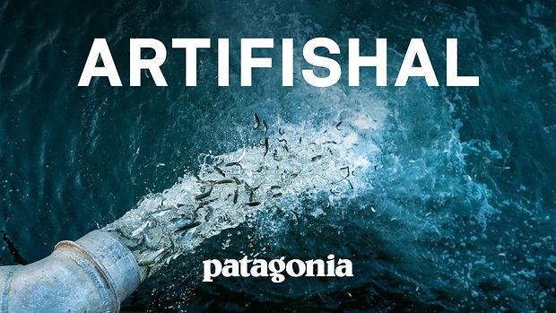 Artifishal-Documentary.jpg