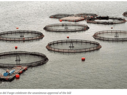 Argentine Province Bans Fish Farms with unanimous approval of bill