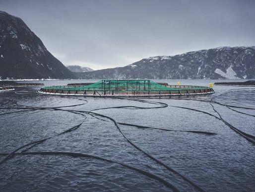 Letter:  East Coast aquaculture versus West Coast aquaculture  |  The Chronicle Herald