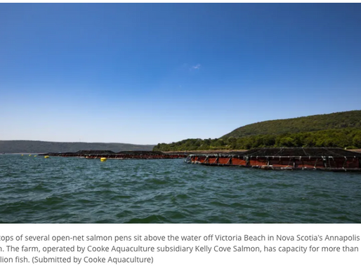 Cooke holding public consultation sessions for 3 Nova Scotia salmon farms