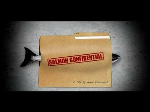 SalmonConfidential-YouTube.jpg