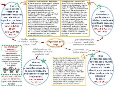 Lección 2: SIN DESCANSO Y REBELDES (10 de julio)