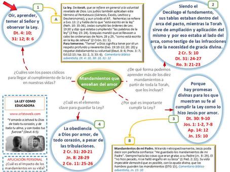 Lección 3: LA LEY COMO EDUCADORA (17 de octubre 2020)