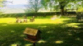 Dvor-giardino-piatti-san-floriano.jpeg