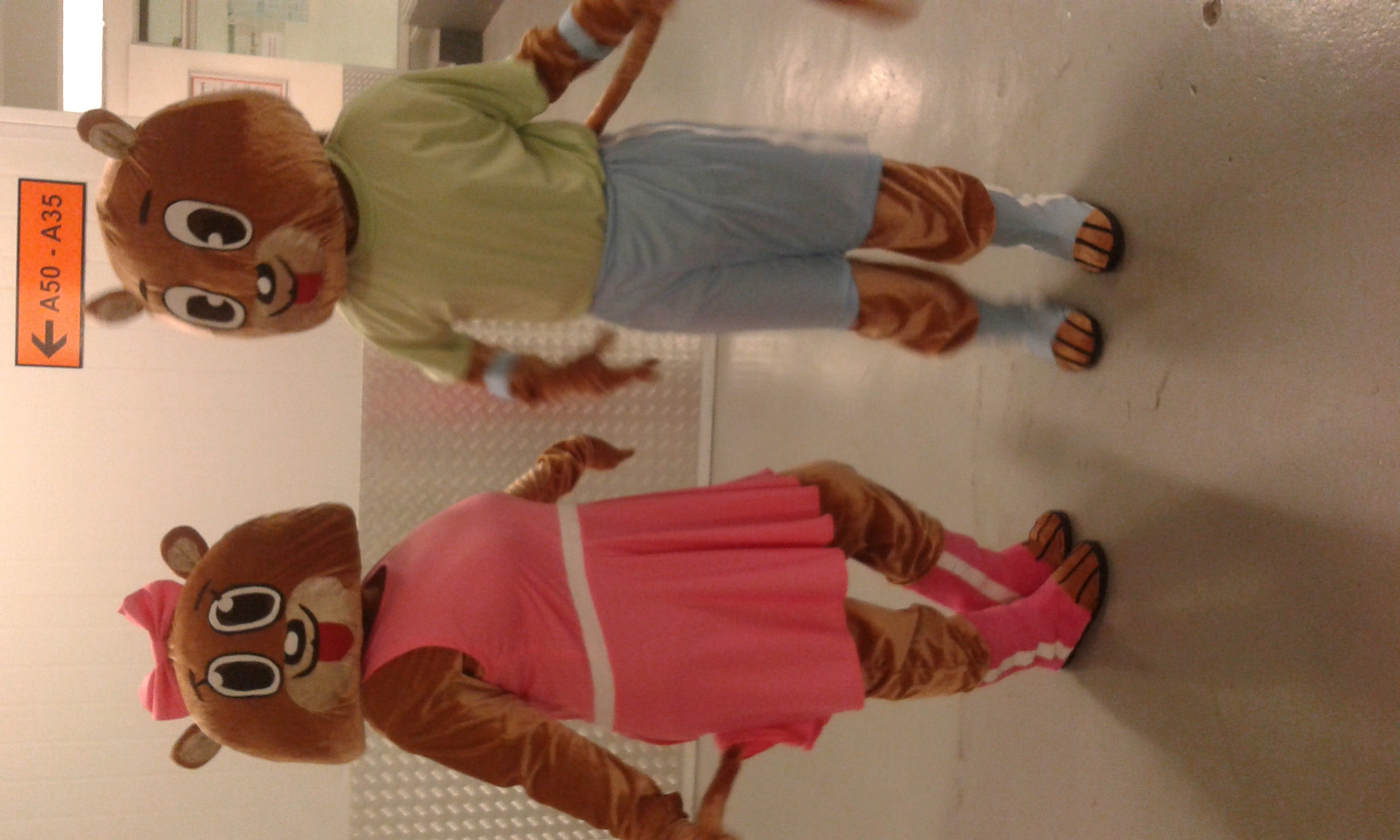 KZN kids Bear Mascots