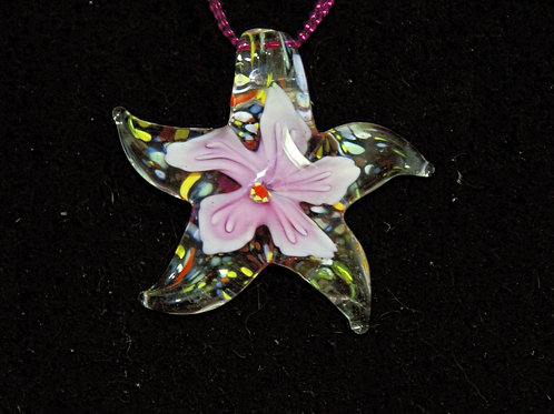 Multicolour Starfish with Pink Centre
