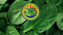 No FDA Surveillance Sampling of Leafy Greens for Yuma, Arizona's 2021/2022 Season