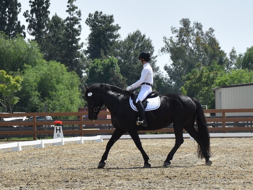 Fresno CDS Dressage Show at Sequoia Hills Stables