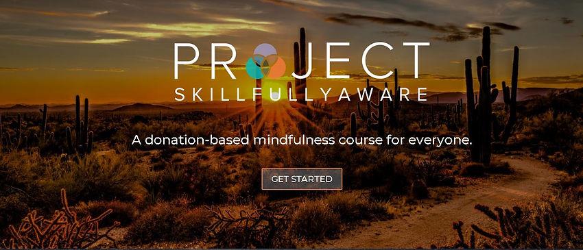 Project Skillfully Awware.JPG