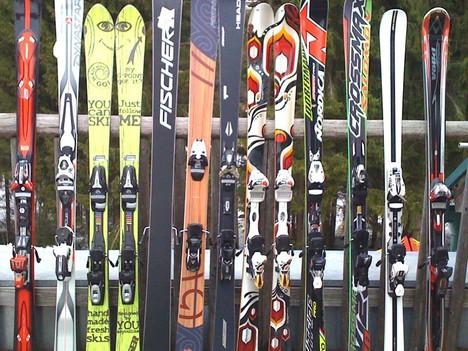 Разновидность горных лыж
