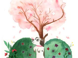 Peach's First Blossom
