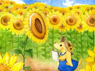 Himwari's Trip to the Sunflower Field