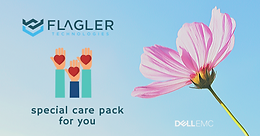 Flagler Technologies Care Pak