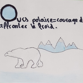 O ours polaire.jpg