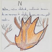 N Nature.jpg