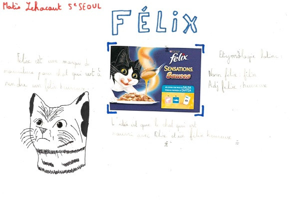 Felix.jpg