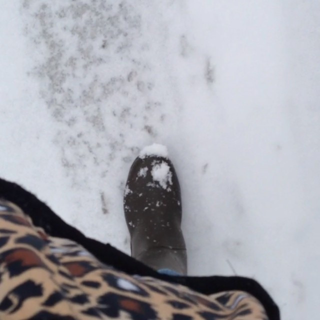 Instagram - walking in the snow…  #雪#レインブーツ#白い#aigle #snow#rainboots#white