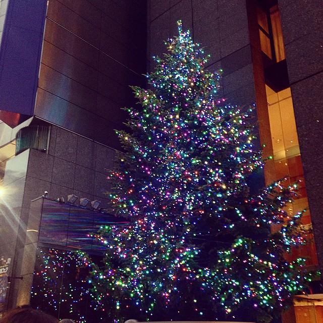Instagram - 銀座ミキモト前のXmasツリー🎄 もう今年もあと1月半かぁ。  #銀座 #ミキモト #Xmas #クリスマスツリー #クリスマス #イ