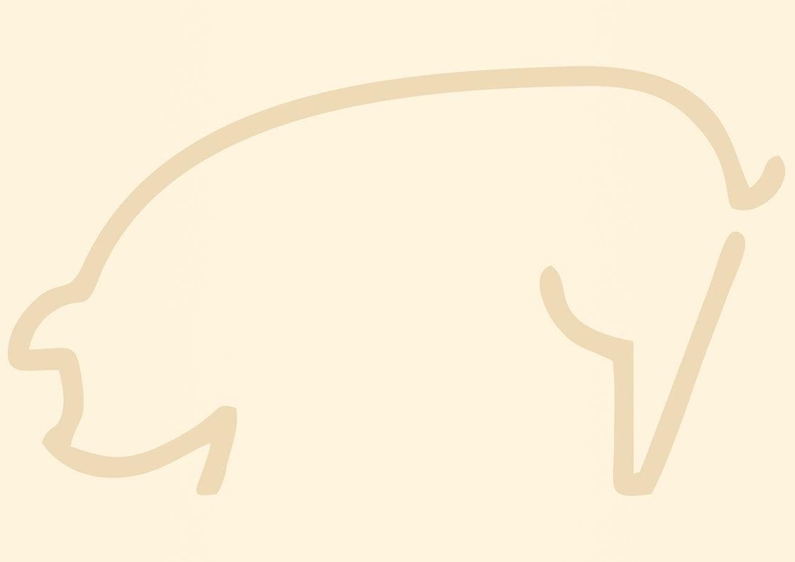 pig background.jpg