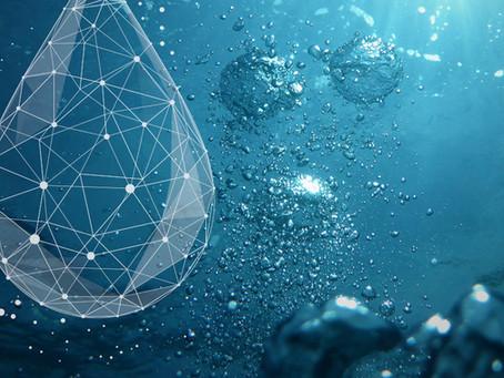 Neuer Verein fördert Produktion von CO₂-neutralem Wasserstoff