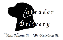 Labrador,Delivery,Services,Baraboo,WI,Restaurant,Grocery,Food,Errand,Courier