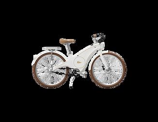 The Roadster X e-bike