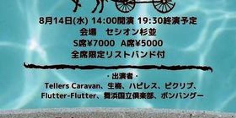 Tellers Caravan Summer Festival2019