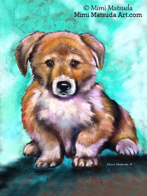 Puppy Love #PL15