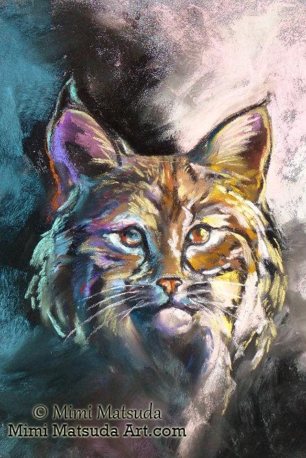 Bobcat #15BC