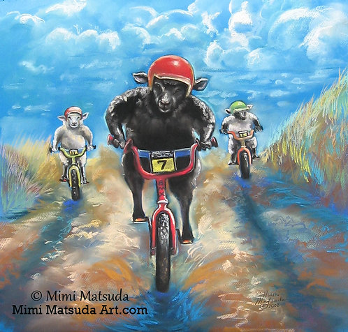 Black Sheep Bikes BMX #288
