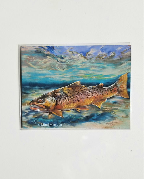 """Magnet - """"Brown Trout"""""""
