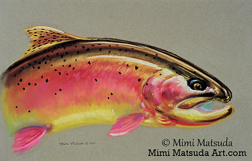 Yellowstone Cutthroat Trout #71