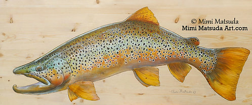 Brown Trout #138