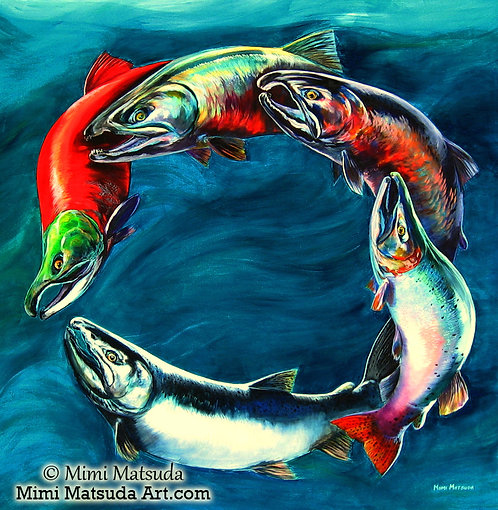 Salmon Circle #208