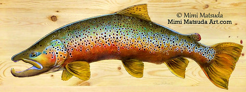 Brown Trout # 1381