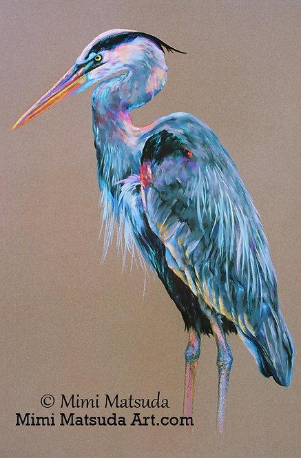 Great Blue Heron #34
