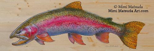 Rainbow #148
