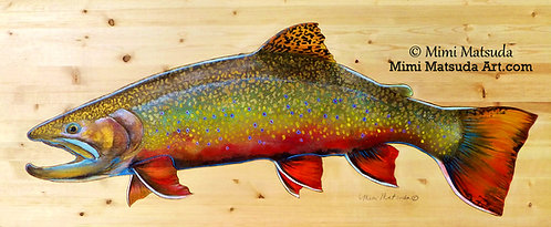 Brook Trout #188