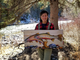 Montanans For Healthy Rivers ~ Tribut(ary) to Local Artists - feature