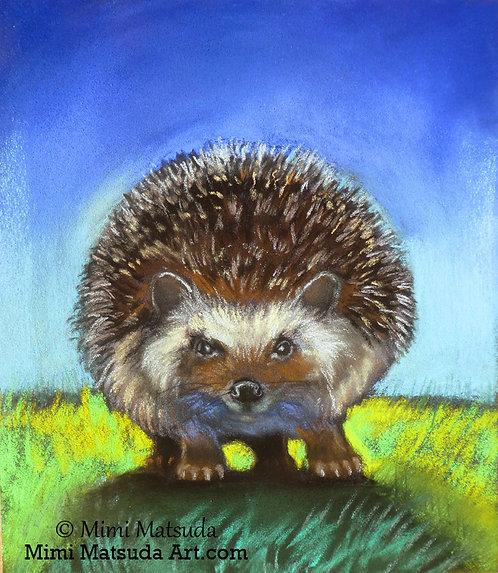 Hedgehog #hh16