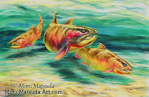 Yellowstone Cutthroat Trio #22