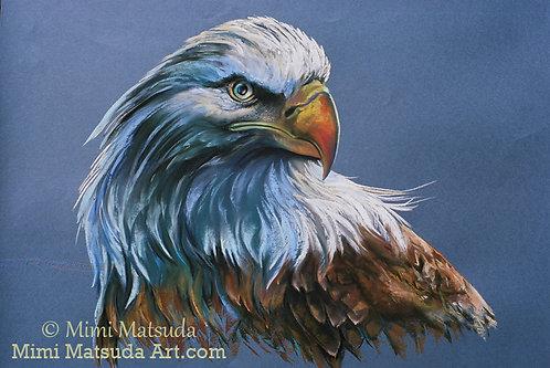 Bald Eagle #44