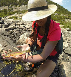 Flyfishing for golden trout, Absaroka Range, Mimi Matsuda