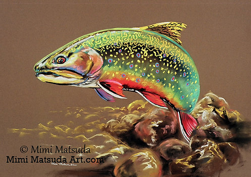 Brook Trout #131