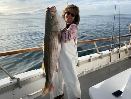 Captree Striped Bass Island princess NY0
