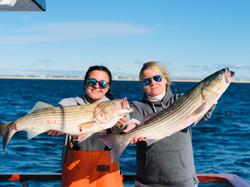 Striped Bass Fishing Captree Island Prin